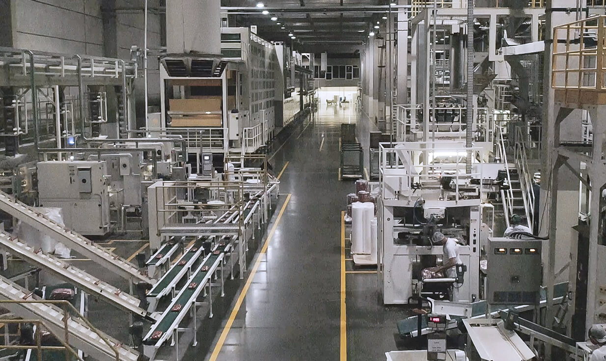 Fotografia New Selmi factory, with over 120 years of tradition