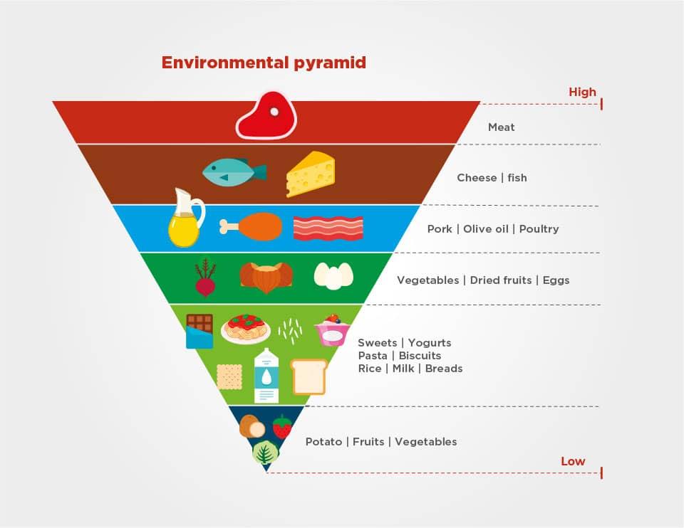 Ilustração Environmental pyramid
